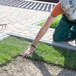 Best Lush landscape and sod Installers